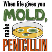 The Providential Discovery of Penicillin